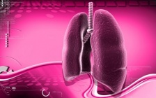 Acute bronchitis - common causes